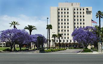 Veterans Affairs Long Beach Healthcare Center